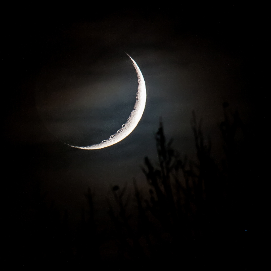 Crescent Moonset