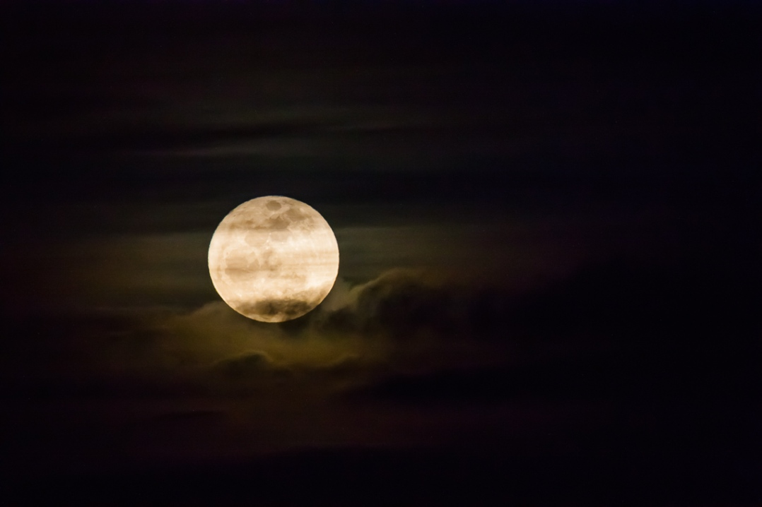 Superperigee Moonrise