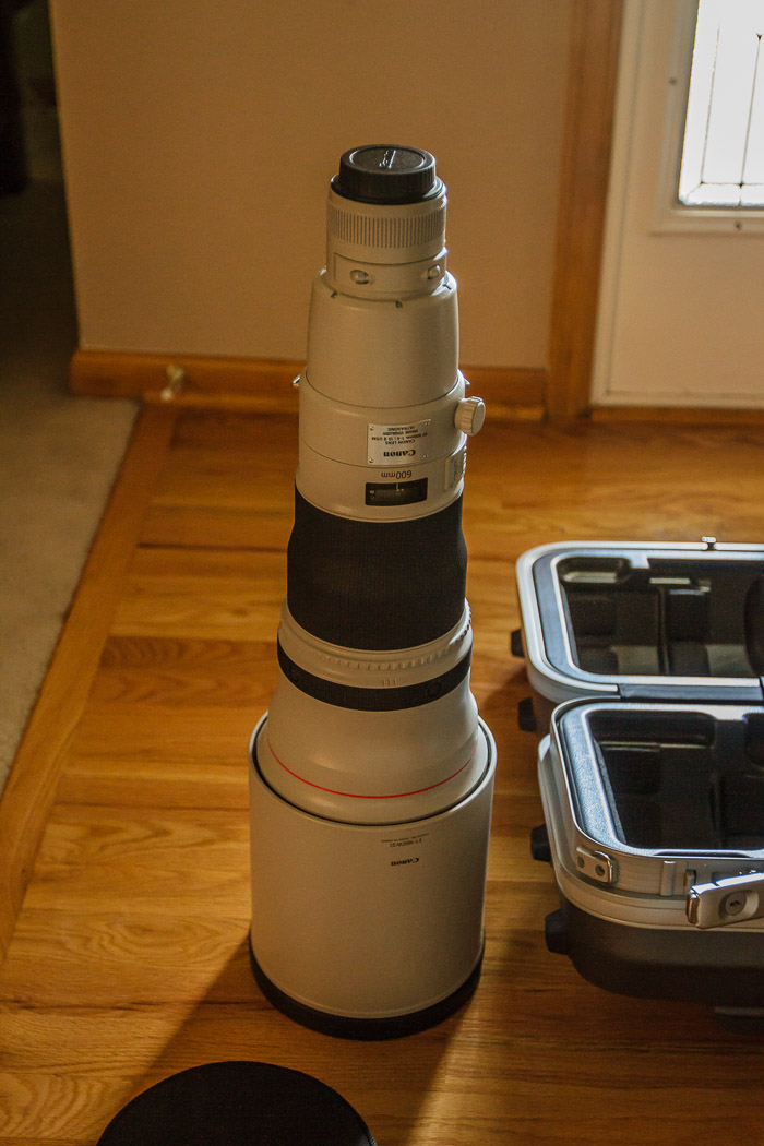 My New 600mm Lens Upright
