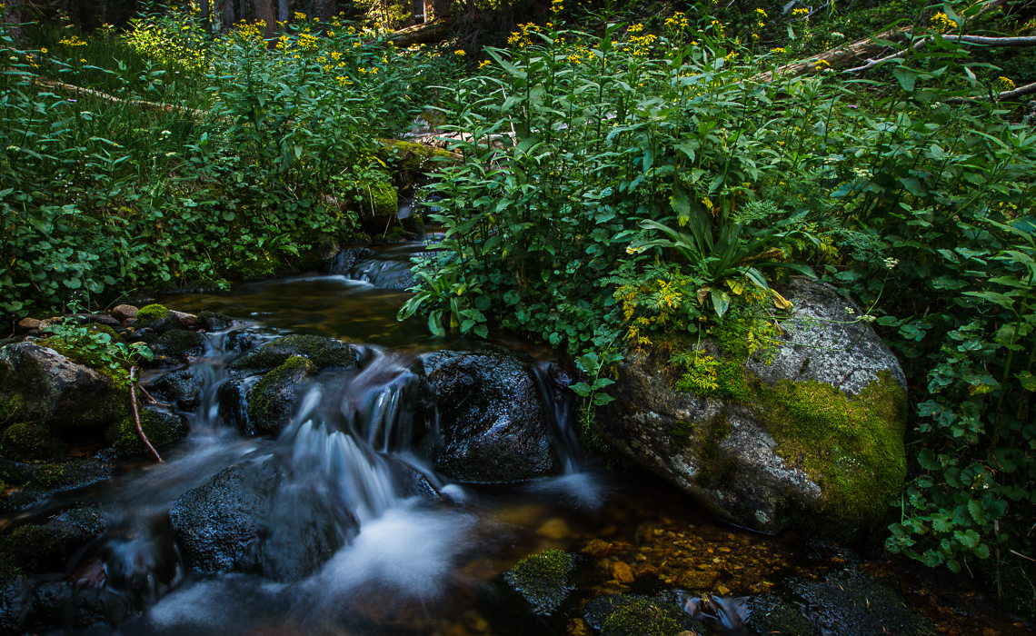 Cascading Creek Featured