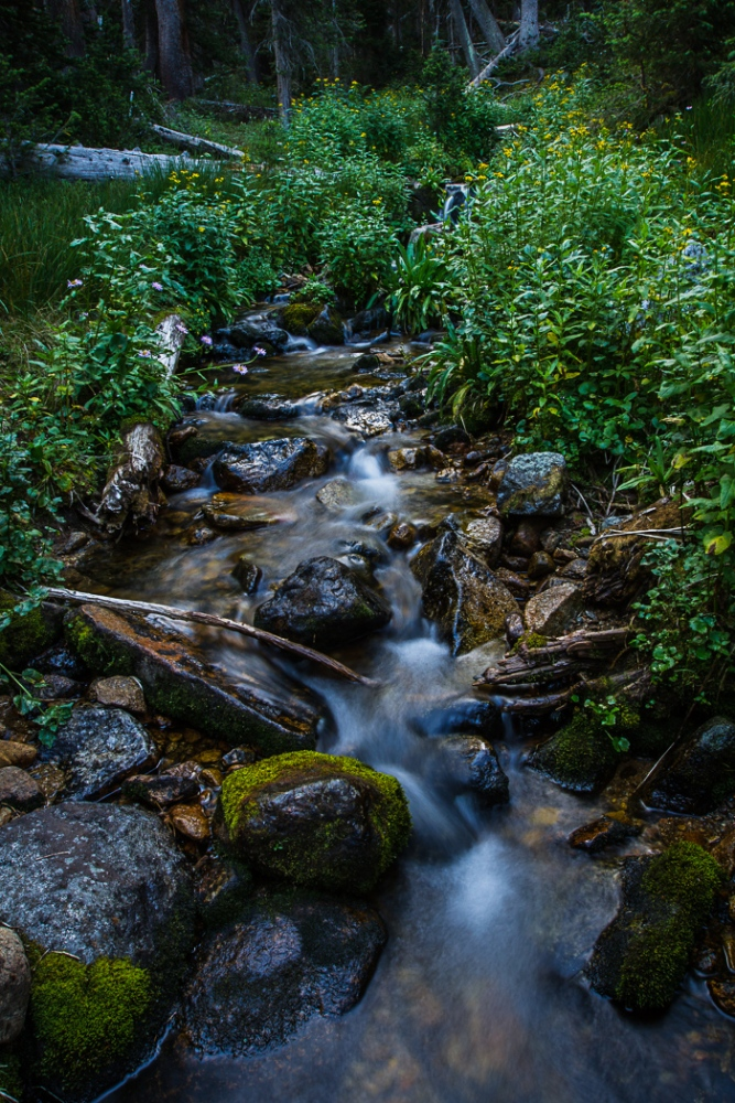 A Cascading Creek (1/6)