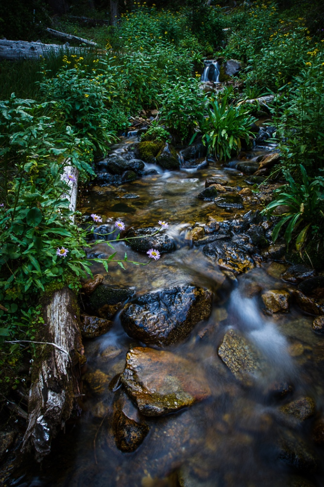 A Cascading Creek (2/6)