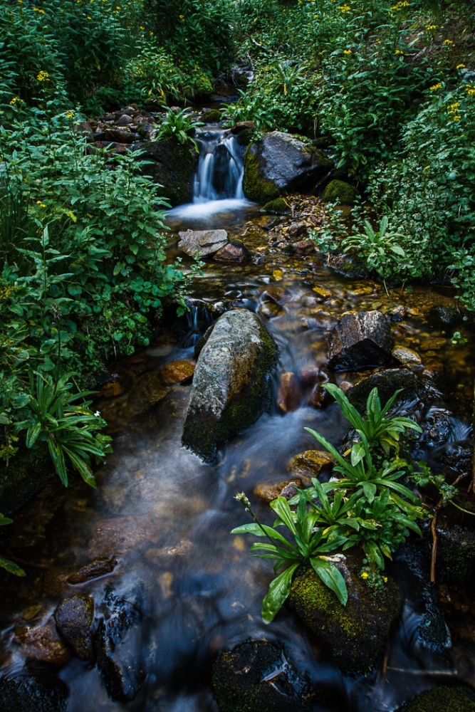 A Cascading Creek (3/6)