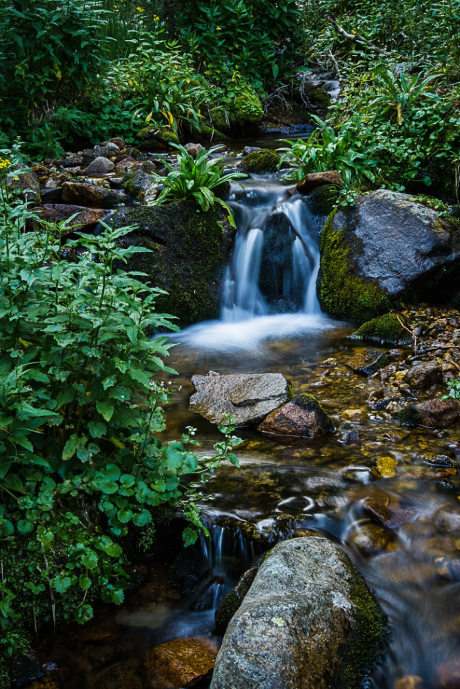 A Cascading Creek (4/6)