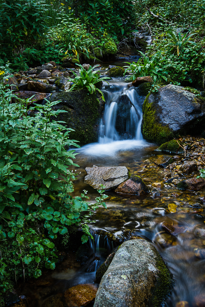 Cascading Creek Series (4 of 6)