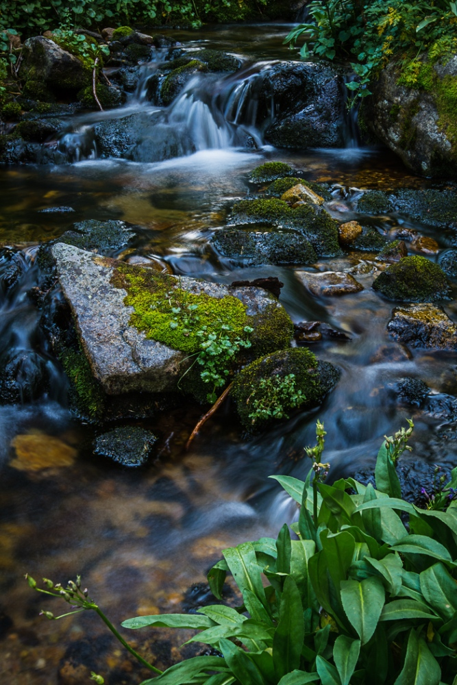 A Cascading Creek (6/6)