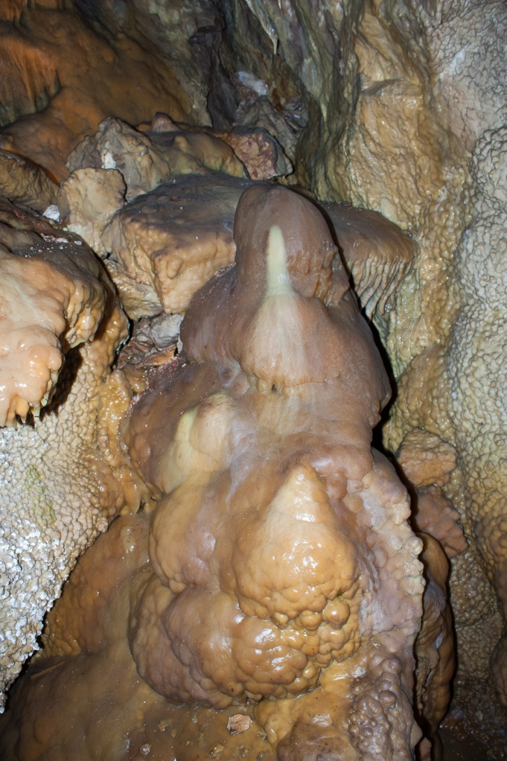 A rare Jewel Cave stalagmite, full of earthy color, surrounded by Dog's Tooth walls and a flow of formations.