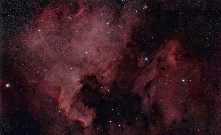 Cygnus - North American And Pelican Nebulas