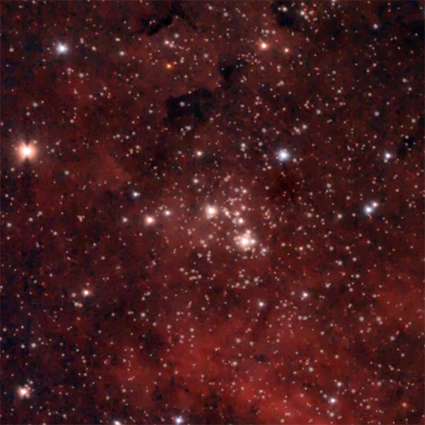 Cygnus - Sadr - NGC6910
