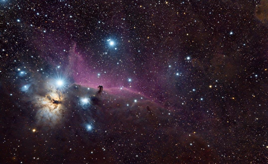 Horsehead and Flame Nebulas